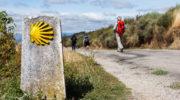 Путь Святого Иакова: паломничество в Сантьяго